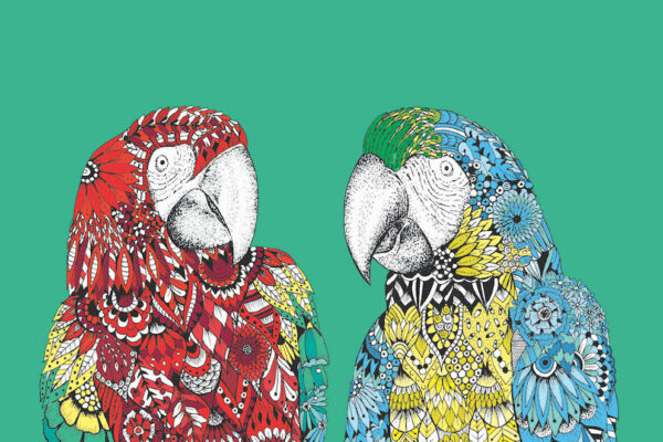 A digital drawing of a red parrot and blue and yellow parrot against a green background