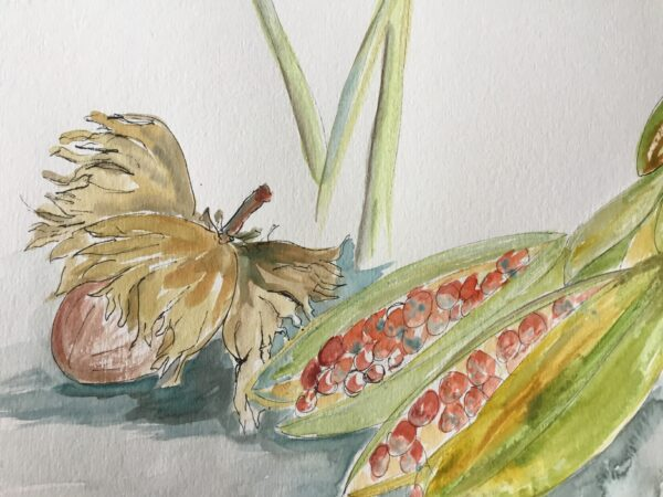 Autumn Hazelnuts and Iris Seed, Clapham Common