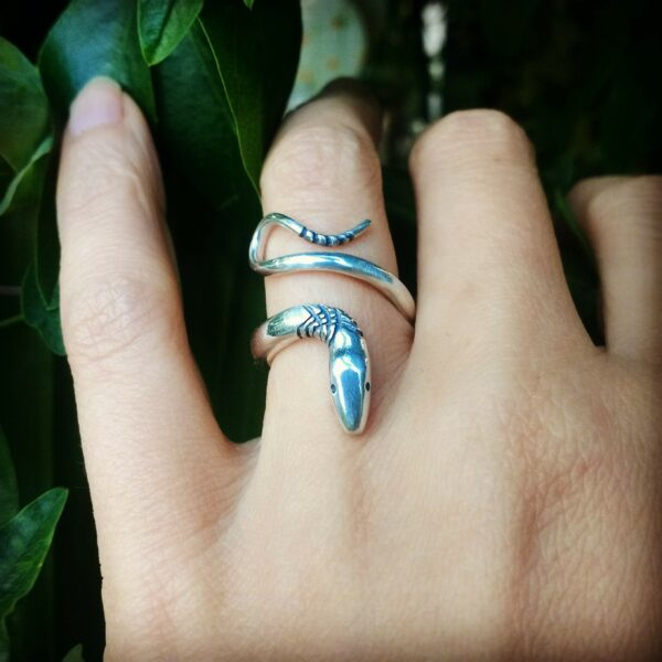 Ring of 2020 | Serpent Ring | Ring of Happiness and Suffering | Ring of Wisdom