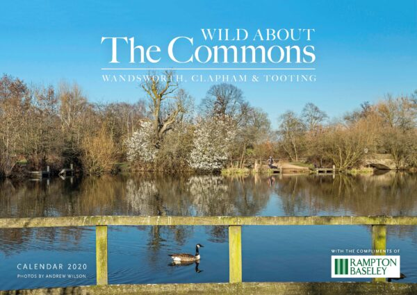 Wild about The Commons 2020 Calendar