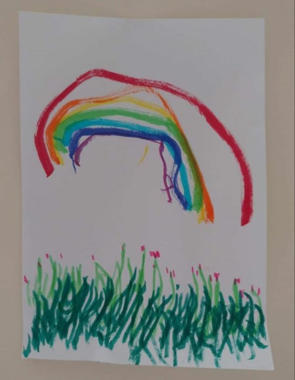 Rainbow and Pink Flowers