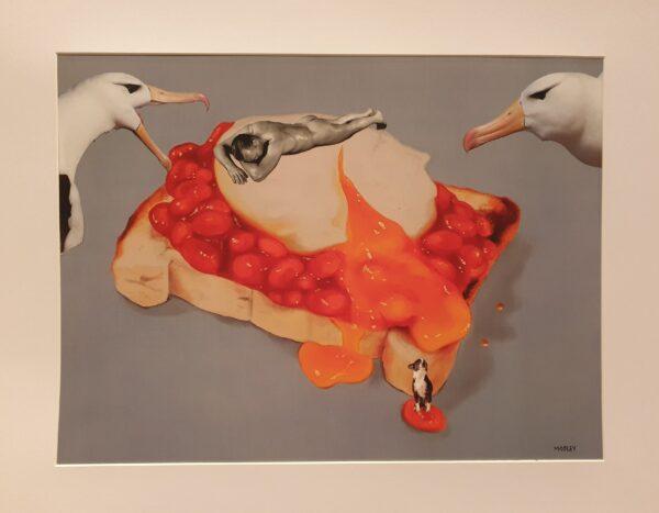 Beans Gulls